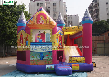 China Das Dia Prinzessin-Inflatable Bounce House With gemacht von bleifreier PVC-Plane fournisseur
